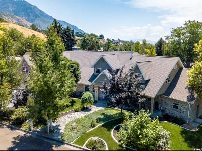 Provo Single Family Home For Sale: 750 E 3900 N