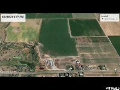 Cache County Farm For Sale: 2910 W Center