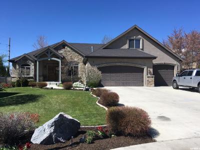 Orem Single Family Home For Sale: 869 E 870 S