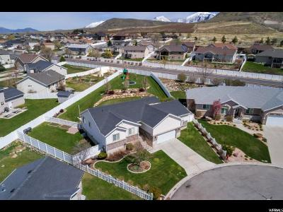 Payson Single Family Home For Sale: 1585 S 50 W