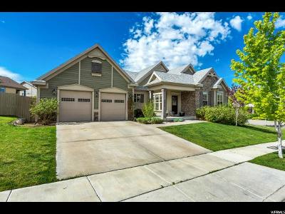 Lehi Single Family Home For Sale: 2869 W Shady View Ln