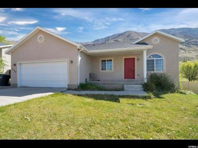 Provo Single Family Home For Sale: 2123 S Alaska Ave