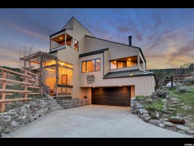 Herriman Single Family Home For Sale: 14600 S Shaggy Mountain Rd
