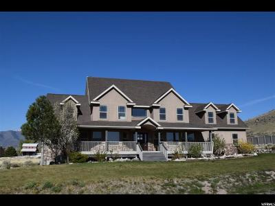 Eagle Mountain Single Family Home For Sale: 9645 Night Hawk Ln
