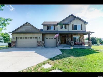 Cache County Single Family Home For Sale: 9105 S 300 W