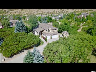 Alpine Single Family Home For Sale: 13343 Grove Dr