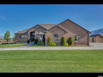 Erda Single Family Home For Sale: 943 E Tanglewood Rd