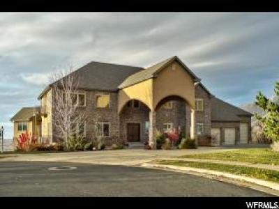 Layton Single Family Home For Sale: 3586 N Layton Ridge Dr E