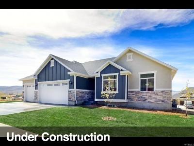 Erda Single Family Home For Sale: 338 E Ballpark Ln