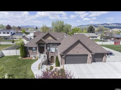 Tremonton Single Family Home For Sale: 761 N 400 E