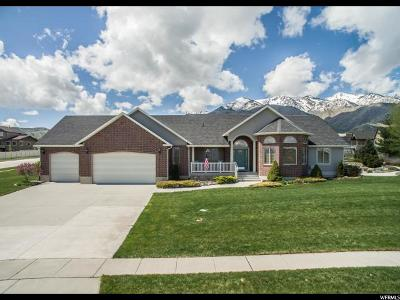 Wellsville Single Family Home For Sale