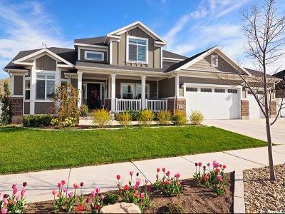 Herriman Single Family Home For Sale: 6673 W Desert Lily Cir