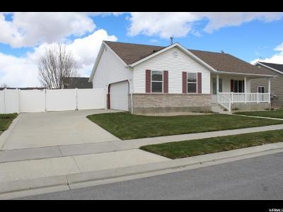Eagle Mountain Single Family Home For Sale: 1717 E Sunrise Dr