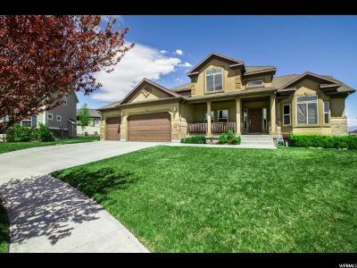 West Jordan Single Family Home For Sale: 8033 S Pine Lake Cir