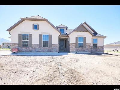 Springville Single Family Home For Sale: 937 W 1050 S