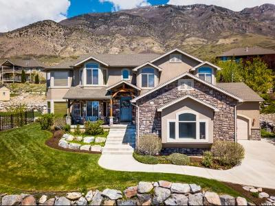 Cedar Hills Single Family Home For Sale: 3366 W Bear Canyon Ln