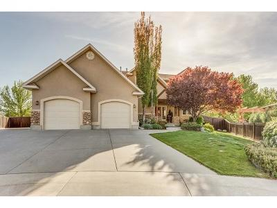 Orem Single Family Home For Sale: 479 N 870 E