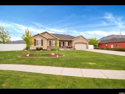 Kaysville Single Family Home For Sale: 2055 S 450 E