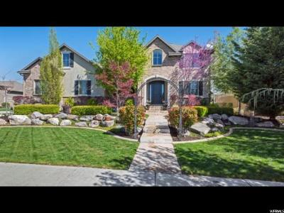 South Jordan Single Family Home For Sale: 3374 W Millville S