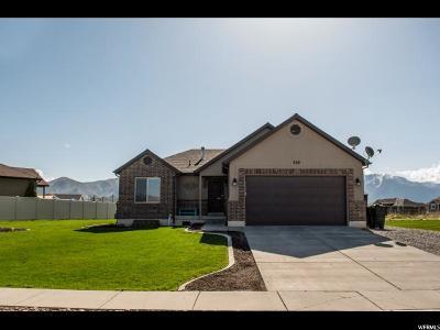 Tremonton Single Family Home For Sale: 268 N 570 E