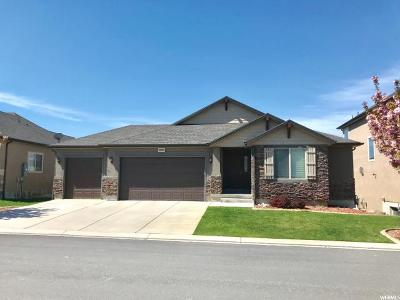 Lehi Single Family Home For Sale: 2809 N Desert Forest Ln