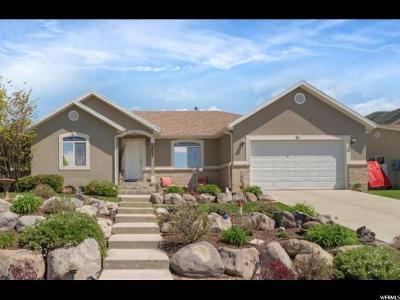 Payson Single Family Home For Sale: 1537 S 30 E