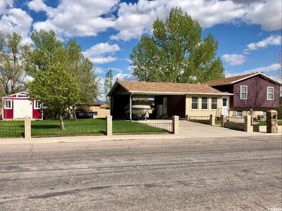 Delta Single Family Home For Sale: 334 N 350 E