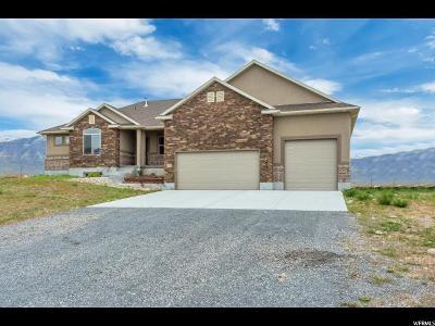 Erda Single Family Home For Sale: 1153 E Brookfield Ave