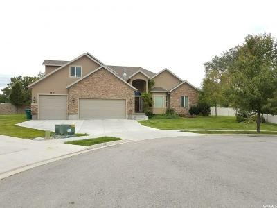 Riverton Single Family Home For Sale: 1647 W Ashby Meadows Ct