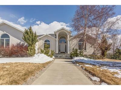 Alpine Single Family Home For Sale: 230 N Matterhorn W