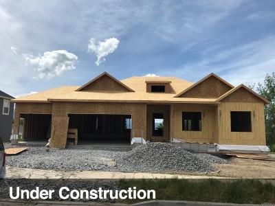 Providence Single Family Home For Sale: 487 N 470 E