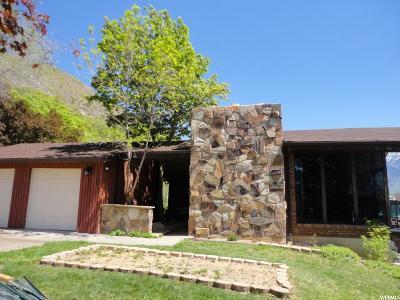 Springville Single Family Home For Sale: 1300 E 225 N