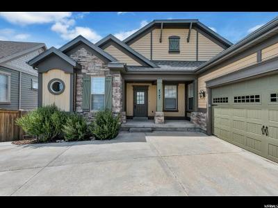 Lehi Single Family Home For Sale: 4747 N Shady Bend Ln