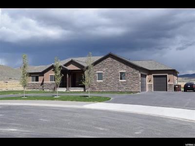 Eagle Mountain Single Family Home For Sale: 1627 E Lakeview Ln