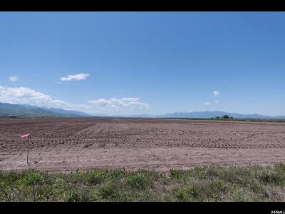 Lewiston Residential Lots & Land For Sale: 500 E 1600 S