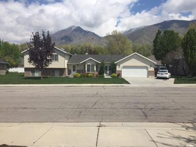 Springville Single Family Home For Sale: 859 E 750 S