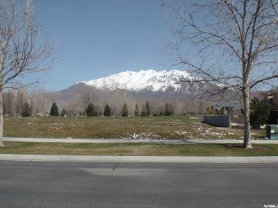 Provo Residential Lots & Land For Sale: 439 W Stone Brook Ln