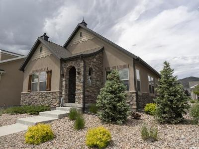 Lehi Single Family Home For Sale: 803 W 2630 N