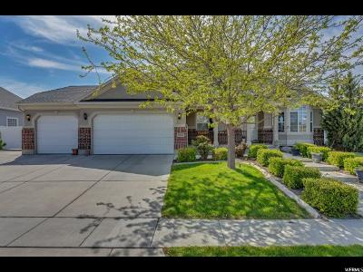 Riverton Single Family Home For Sale: 11816 S Oxford Farms Dr