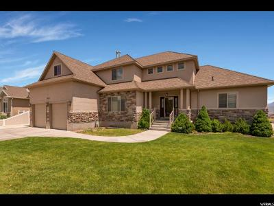Herriman Single Family Home For Sale: 13157 S Dillan Cir