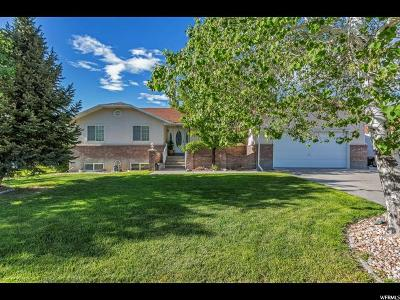Tooele Single Family Home For Sale: 371 E 500 N