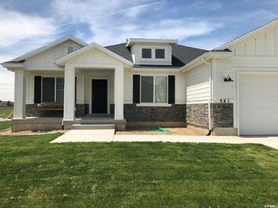 Spanish Fork Single Family Home For Sale: 341 N 2700 E