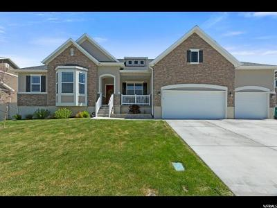 Lehi Single Family Home For Sale: 731 S 1180 W