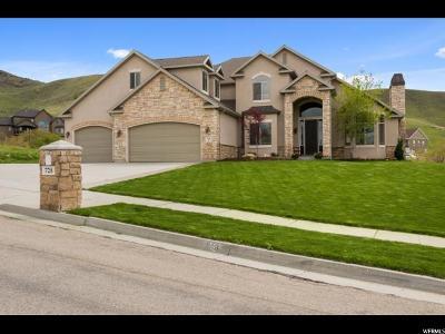 Tooele Single Family Home For Sale: 728 Elk Meadow Loop