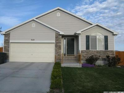 Tooele Single Family Home For Sale: 929 N 720 W