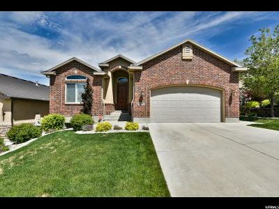 South Jordan Single Family Home For Sale: 506 W Aspen Gate S