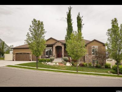 Kaysville Single Family Home For Sale: 731 W Pegasus