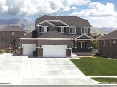 Stansbury Park Single Family Home For Sale: 6050 N Spring St W