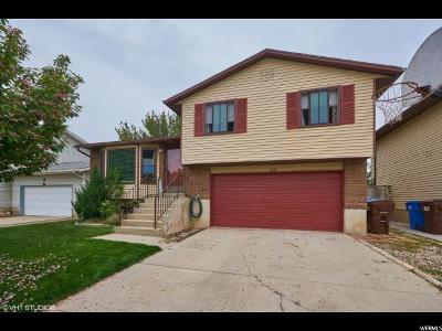 Sandy Single Family Home For Sale: 213 E Angel St S