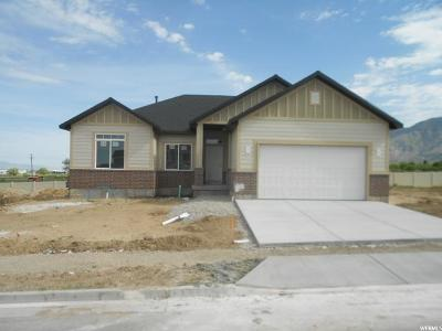Brigham City Single Family Home For Sale: 1058 W 540 S